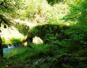 Pont des fées cascade