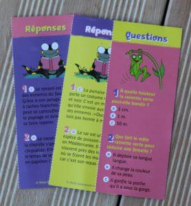 Salamandre questions
