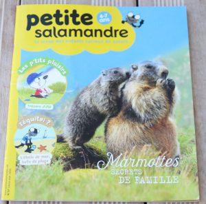 magazine salamandre