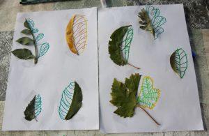 feuille-automne-symetrie