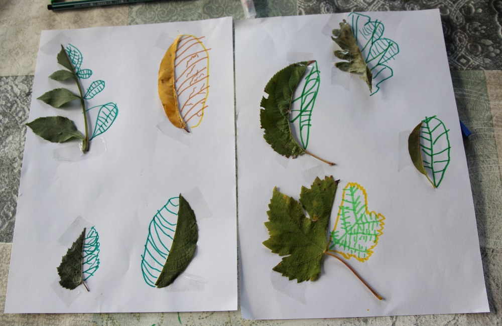Dessiner des feuilles d 39 automne payette family - Dessiner des feuilles d automne ...