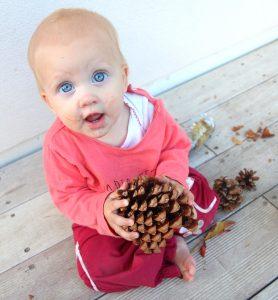 paniers à trésors automne